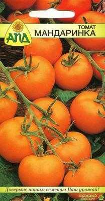 Сорт томатов Мандаринка