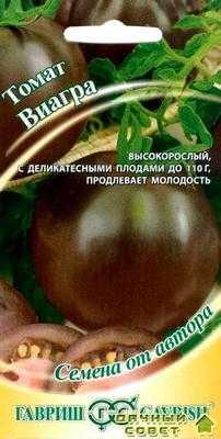 Сорт томатов Виагра