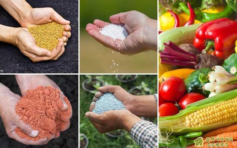 Разновидности и применения неорганических удобрений