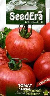 Сорт томатов Банзай