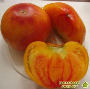 "Томат ""грейпфрут"""