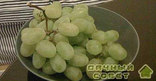 """Сорт винограда """"Ланка"""""""