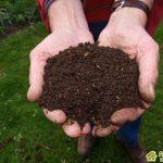 Как оплодородить почву