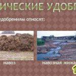 Органоминеральные удобрения.Какое для чего использовать