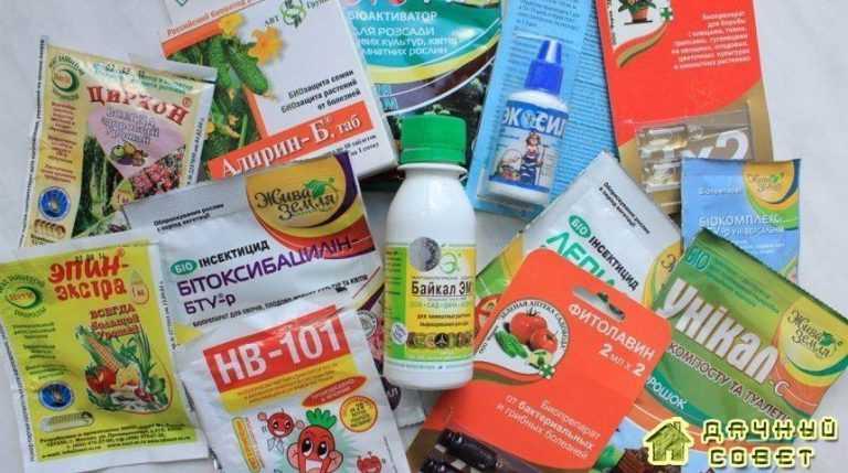 Препараты для борьбы с вредителями и болезнями растений