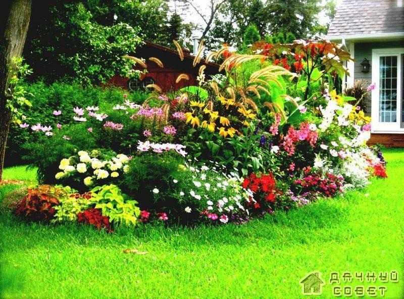 Создание сада своими руками